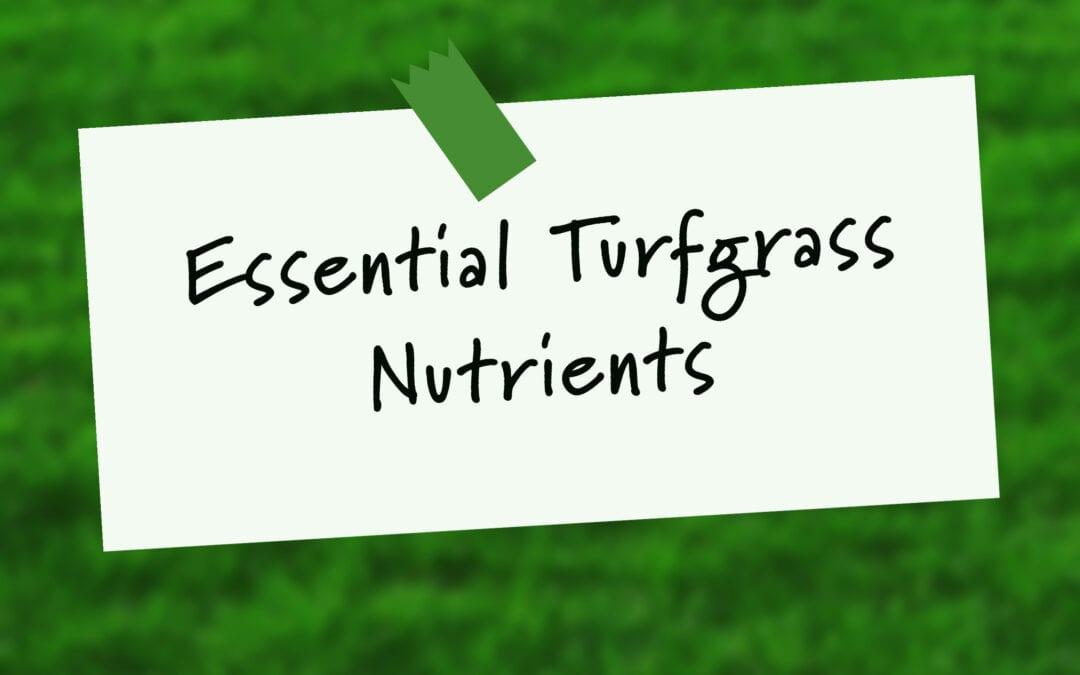 Essential Turfgrass Nutrients